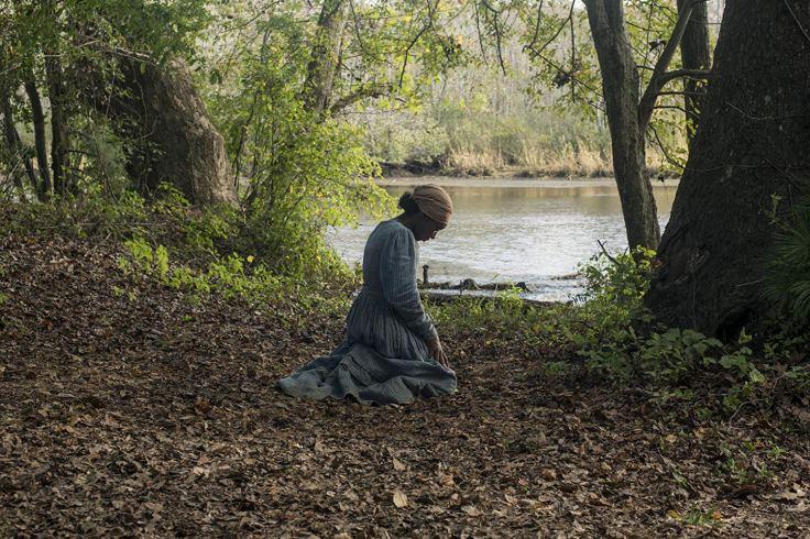 Harriet 2.jpg