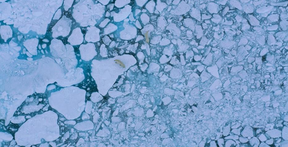 Last Ice3